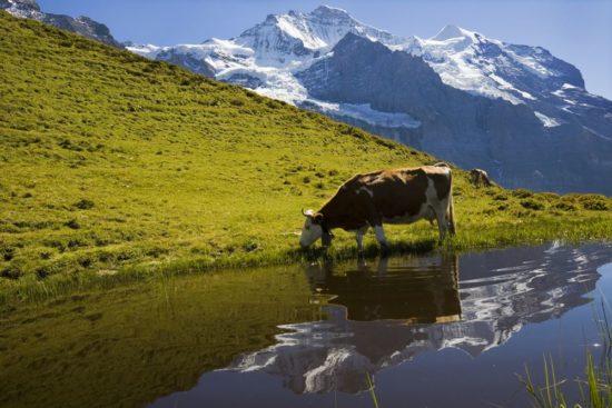 Die Steiermark mit allen Sinnen genießen!