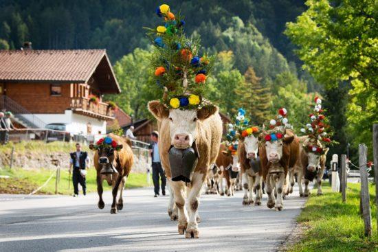 Reither Bauernmarkt mit Almabtrieb und Kirchtagsfest